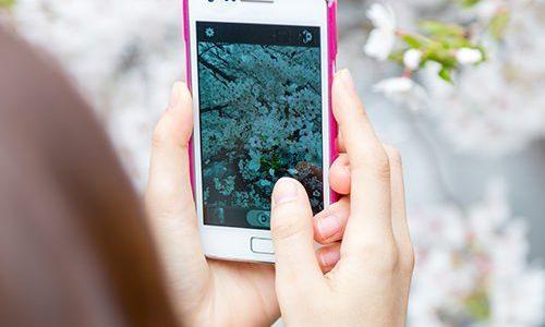AndroidスマホやSDの写真が消えた(ギャラリーに写真が表示されない)場合の対処法